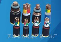 防爆屏蔽电缆型号厂家 防爆屏蔽电缆型号厂家