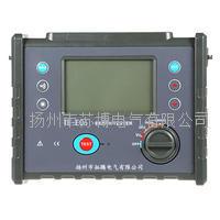 TE-E06数字式接地电阻测试仪