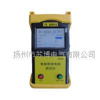 TE-5001S手持式智能绝缘电阻仪