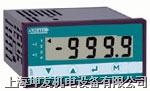 防爆数字量输入数显表 DIP-SI 300