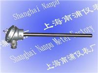 常用標准熱電阻 WZP-120