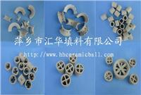 陶瓷散堆塔填料(鲍尔环、拉西环、矩鞍环、异鞍环等) 瓷环