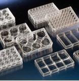 多孔细胞培养板 167063