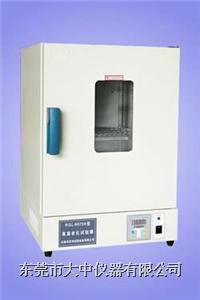 高温老化试验箱 DZGW