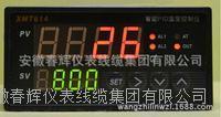XMT614智能PID溫度控制儀 XMT612 XMT613 XMT614  XMT616  XMT618