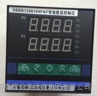 HSRB1299104PAF智能數顯控制儀 HSRB1299104PAF  HSRB1299102PAI  HSRB1299102PAH H