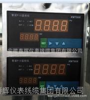 智能PID溫控儀XMT806