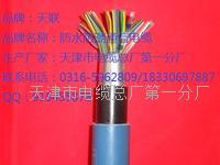 HYAC自承式通信电缆规格使用 HYAC
