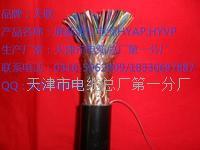 绞对加密电话电缆价格  HPVV