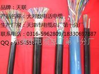 大对数通讯电缆HYVP销量 HYVP