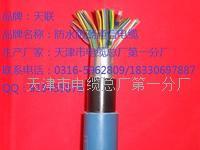 铠装通讯电缆HYAT22价格 HYAT22