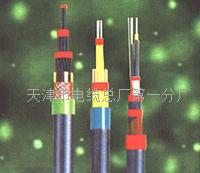 辐射电缆线 BV销量  BV