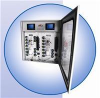 重金属在线测定仪 AVVOR 9000