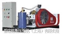 氮气增压机 PGA15-0.22