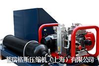IMD高压压缩机 PGA15-0.27