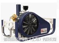 射击专用高压空气压缩机 PGA25-0.22