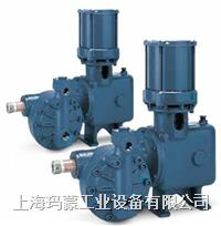 美國NEPTUNE海王星液壓隔膜計量泵 500-D