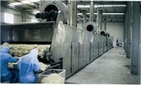 脱水蔬菜专用干燥机 DWT
