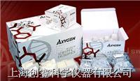 血基因组小量制备试剂盒