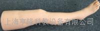 针灸腿部训练模型   100011F