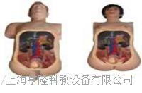 高仿真泌尿内镜技能训练人体模型 HL-MN100