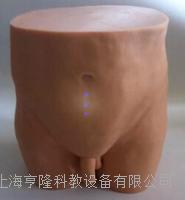 针灸臀部训练模型 ZK1000LS
