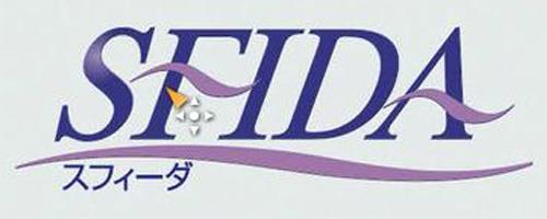 日本SFIDA