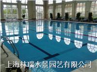 游泳池水质管理 无