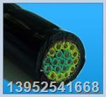 HD,SBHP,WYHDP耐寒屏蔽电缆