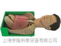 透明洗胃、胃肠减压仿真标准化病人 KAH-H375001