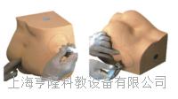 臀部注射实习模型KAH-S14 KAH-S14