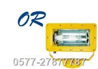 皇隆,BFC8100,防爆泛光灯,皇隆灯具