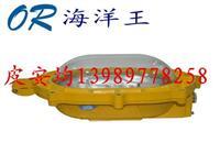 BFC8120内场强光防爆灯主要技术参数