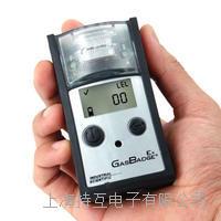 GBEx单一可燃气检测仪