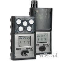 气体检测仪 MX6