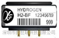 氢气传感器H2-BF H2-BF