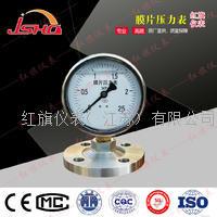 膜片压力表 YTP-100/150