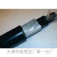 自承式市话电缆_HYAC_50×2×0.5