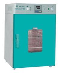 電熱恒溫鼓風干燥箱/烘箱/烤箱 DHG-9030A