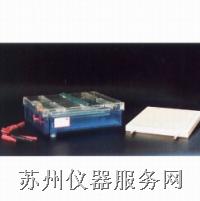电泳仪 等电聚焦多用途电泳槽-DYCP-37B