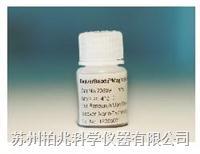 羧基磁性琼脂糖微球-50,000 71215