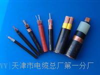 MHYAV5*2*0.5电缆结构图 MHYAV5*2*0.5电缆结构图
