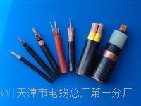 MHYAV5*2*0.8电缆结构 MHYAV5*2*0.8电缆结构