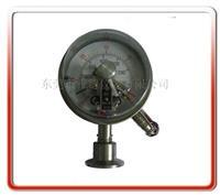 卫生型电接点隔膜表 100MCX-C01