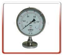 150MM法兰式隔膜压力表 150BF-MF
