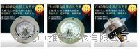YX-60轴向带边普通电接点压力表轴向普通电接点压力表