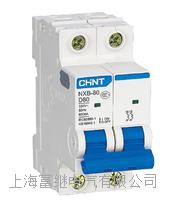 NXB-80小型斷路器 NXB-80/2P