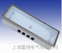 DP-134荧光蓬顶灯  DP-132