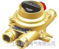 TJHHL402-1船用铜质水密带指示灯开关 TJHHL412-1