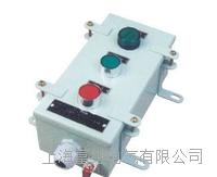 LN95-21/2船用按鈕盒 LN95-21/2